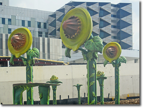 Fiona Stanley Hospital Public Art - Game