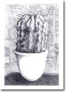 A2 Drawing - House Plant