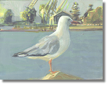 "Small Oil On Board "" Gull """